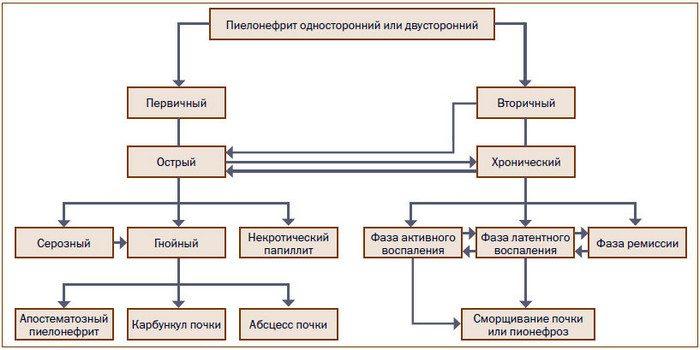 пиелонефрит клинические рекомендации