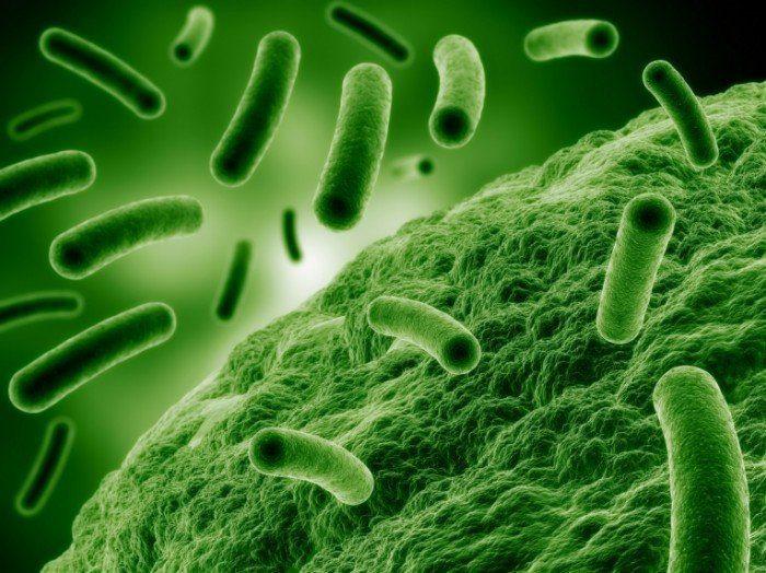 пиелонефрит этиология и патогенез