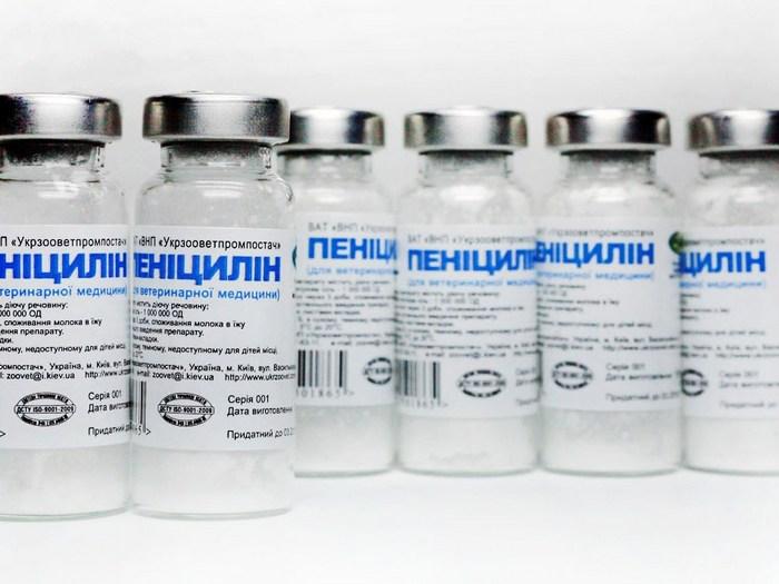 Лечение почек антибиотиками