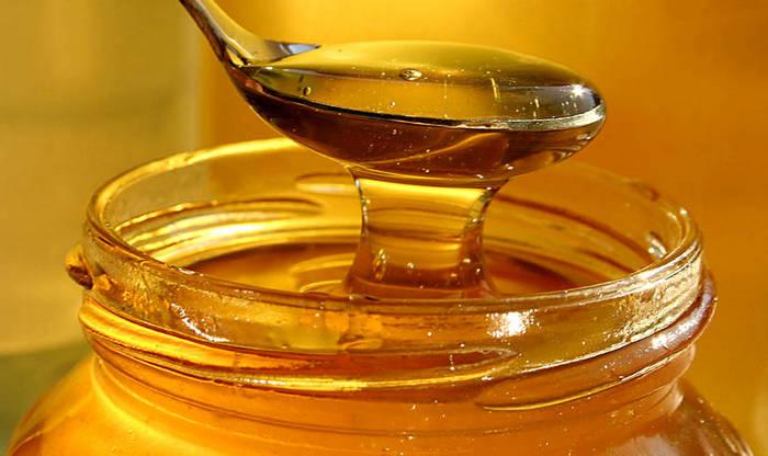 Полезные свойства меда - Likar.Info
