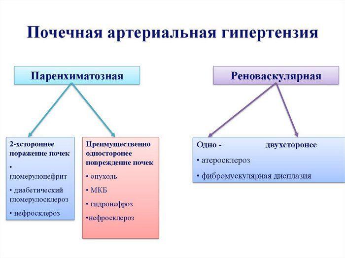 почечная гипертония симптомы лечение